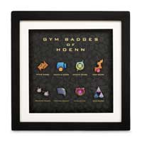 Hoenn Premium Gym Badge Set